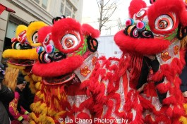 """Lion dancers at """"Madison Street to Madison Avenue"""" Lunar New Year Celebration on Feb. 6, 2016 in New York City. Photo by Lia Chang"""